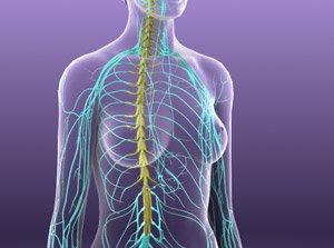 Nerve Blocks